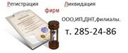 Регтсирация ООО, ИП, ДНТ под ключ