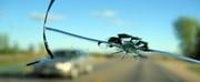 Ремонт сколов и трещин на автостеклах