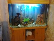 Продаю  аквариум 180 литров